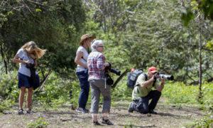 Flores Komodo Photo Tours