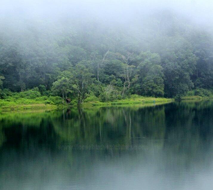 Ranamese Lake - East Manggarai