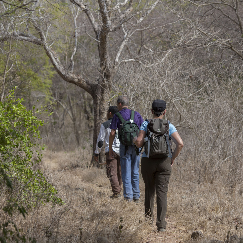 Eco Tour - Trekking - Flores - Komodo