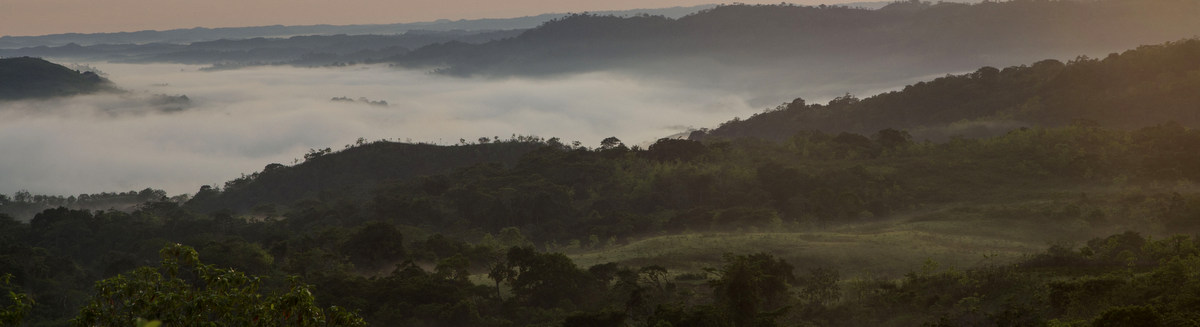 Place to visit - Birding Lesser Sunda